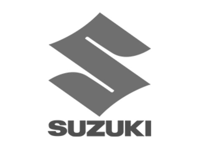 Suzuki Equator 2010